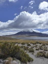 Lago Chungara, Vulkan Parinacota