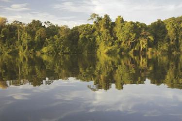 Traumhafter Amazonas