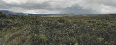 Paramo Landschaft auf dem Weg nach San Agustin, ©Georg Rubin