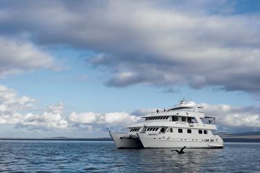 Katamaran Seaman Journey