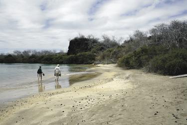 Strand auf Floreana