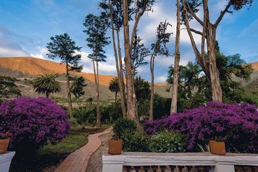 Hacienda Piman