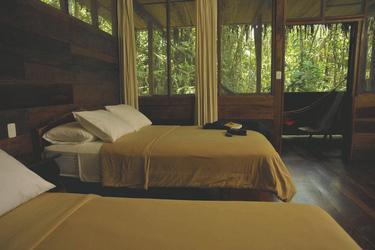 Zimmerbeispiel Sacha Lodge