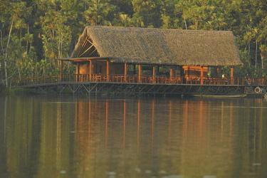 Sacha Lodge - Terrasse