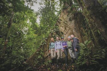 Ausflug in den Regenwald