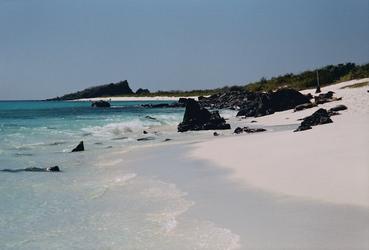 Galapagos, Espanola, Gardner Bay