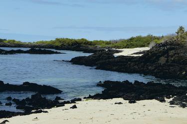 Santa Cruz, Nordseite, auf den Galapagos