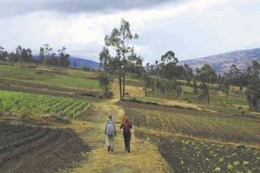Wanderung durch Farmland