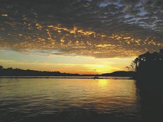 im Amazonasgebiet