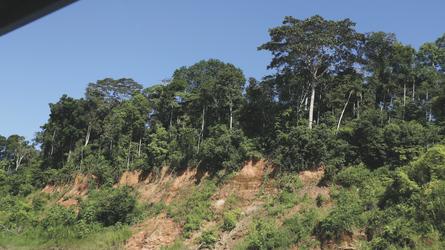 auf dem Weg zum Tambopata Research Center