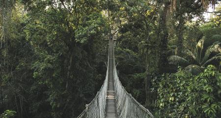 Canopy, ©Inkaterra