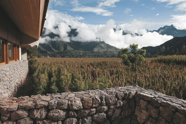 Blick vom Hotel auf die umliegenden Maisfelder, ©explora