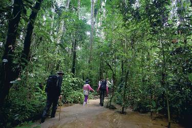 Ausflug Posada Amazonas