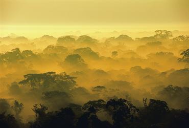 Abendstimmung im Tambopata Naturreservat