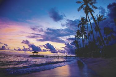 Strand (c) A. Crouchley, ©Polynesian Xplorer