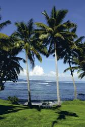 Sinalei Resort