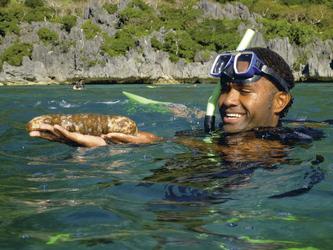 Schnorcheln mit einem Meeresbiologen (c) D. Galbraith