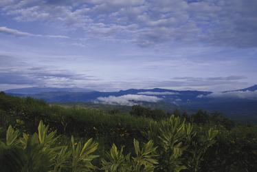 Hochland bei Mount Hagen