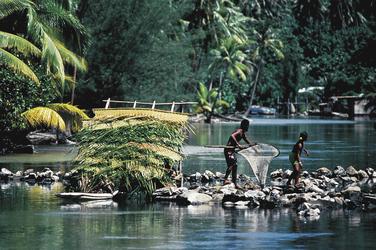Fischer auf Huahine (c) T. Zysman