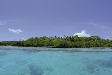 Vogelinselchen Tikehau