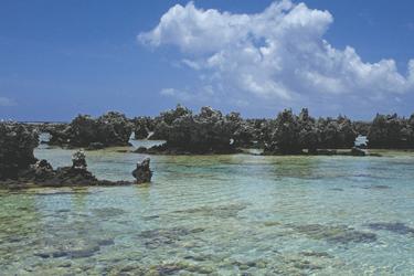Riffinselchen auf Rangiroa