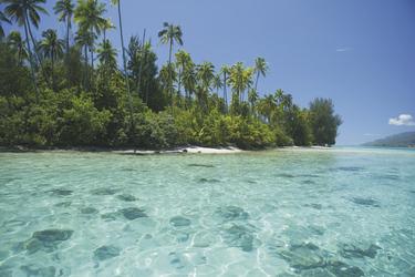 Lagune auf Moorea, ©Tahiti Tourisme