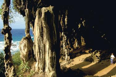 Höhle (c) T.J. Martinez, ©José Martinez Tomas