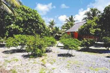 Bungalow im Maupiti Paradise