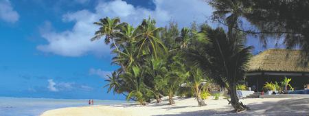 Strand des Nautilus Resort