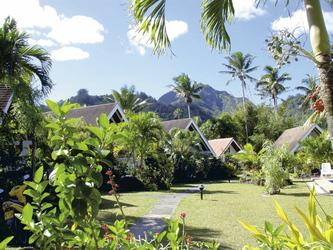 Gartenanlage Palm Grove