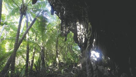 Anatakitaki Höhle