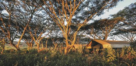 Ngorongoro Camp, ©Lemala