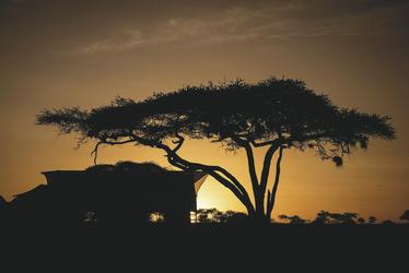 Abendstimmung im Siringit Serengeti Camp