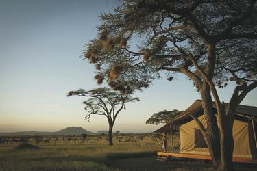 Safarizelt im Siringit Serengeti Camp