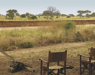 Blick vom Tarangire View Camp, ©Wilkinson Tours