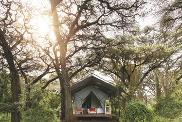 Safarizelt für die Gäste