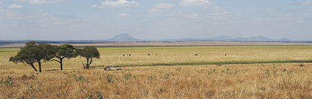 Landschaft im Tarangire NP, ©Sanctuary Retreats