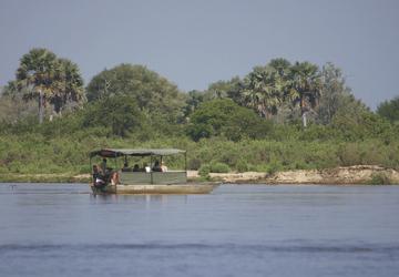 Bootssafari auf dem Rufiji