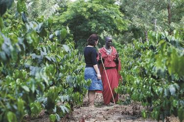 Führung über die Kaffeeplantage