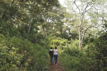 Wanderung im Ngorongoro Schutzgebiet