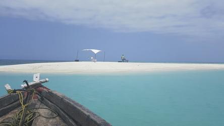 Bootsausflug zu einer einsamen Sandbank