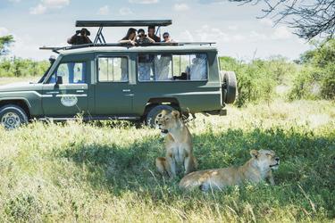 Beste Sicht vom Safarifahrzeug, ©Tanganyika Expeditions