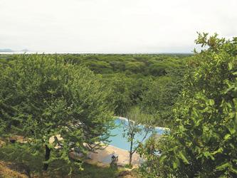 Aussicht der Sangaiwe Tented Lodge zum Lake Burunge