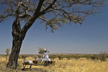 Exklusives Picknick, ©Elewana SkySafari