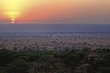 Sonnenaufgang über der Serengeti, ©Elewana SkySafari