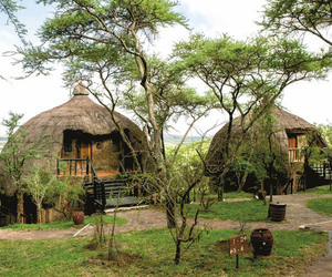 Serengeti Serena Safari Lodge, ©Serengeti Serena Safari Lodge