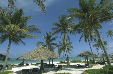 Tropischer Strand, ©Nicholas Pitt