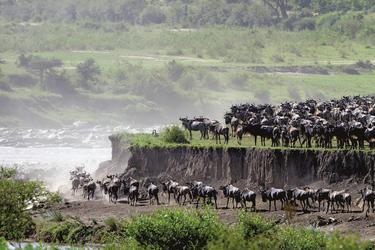 Die große Migration in der Serengeti, ©Jörg Ehrlich, DIAMIR Erlebnisreisen