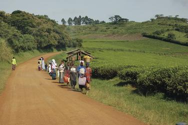 Straßenszene in Uganda
