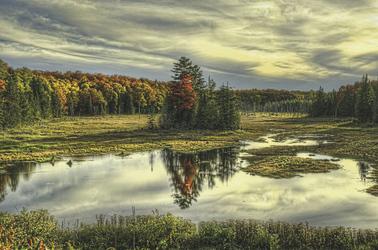 Algonquin Provincial Park , ©OTMPC 100007105